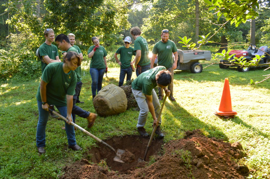 student interns digging a hole to plant a tree