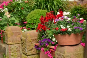 red, white, adn purple flowers in planter on stone wall