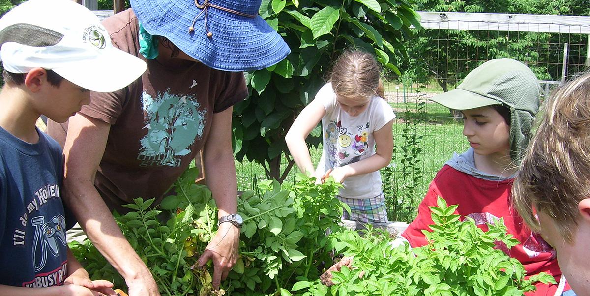 Children in Community Youth Garden.